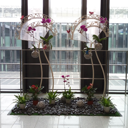 植物組景10