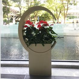 植物組景13