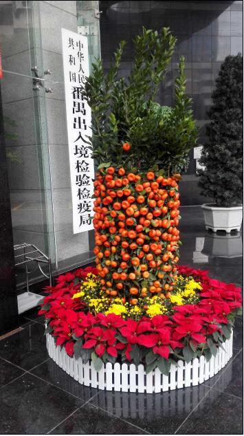 年桔+花圃2